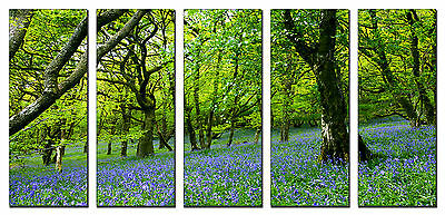 5 Piece Green Tree Spring Forest Canvas Wall Art Picture Print Home Decor