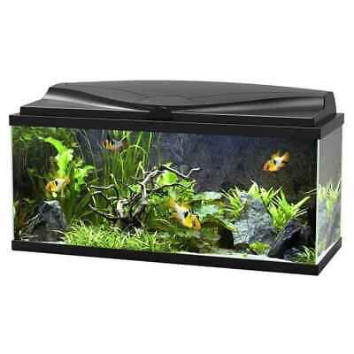Aquarium 80 LED Noir - Ciano