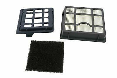 Green Label Hepa Filter Set For Aeg/Electrolux/Tornado T8 (Compares To Aeg Aef 1