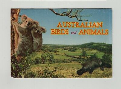 e3255)        VINTAGE FOLDOUT COLOUR VIEWS OF AUSTRALIAN ANIMALS and BIRDS