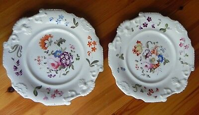 A pair of early 19th century bone china PLATES  with fine decoration