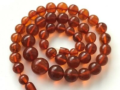 VINTAGE Beautiful Butterscotch / Egg Yolk Baltic Amber Beads Necklace! 55 gr