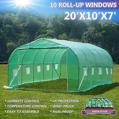 20'x10'x7' Larger Hot Green House Walk-In Greenhouse Plant Outdoor Gardening