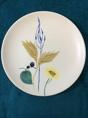 Vintage Radford Pottery Hand Painted Plate CT P