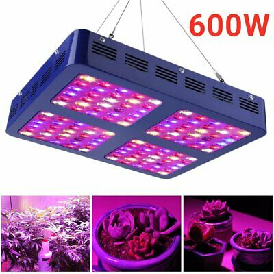 600W 120x LED Grow Light Full Spectrum with VEG/ BLOOM Switches For all stage SY