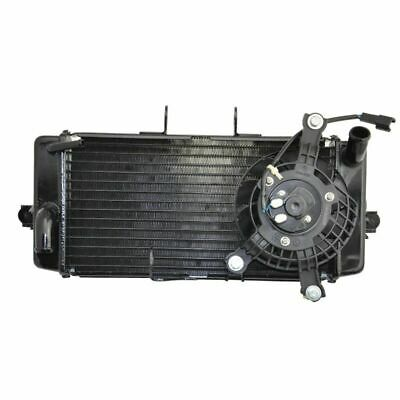 For Suzuki GW250 2012 2013 2014 12 13 14 OEM Replacement Cooling Radiator NEW