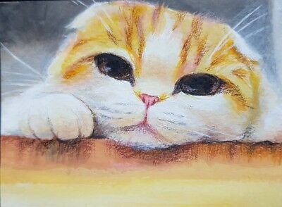 VERY CUTE CAT ORIGINAL ACEO Acrylic Colored Pencil Painting Art Card ATC