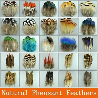 Natural chicken pheasant feathers Rooster peacock Plumes DIY decoration