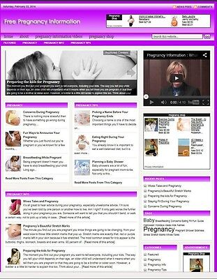 PREGNANCY HELP BLOG WEBSITE BUSINESS FOR SALE! with TARGETED CONTENT