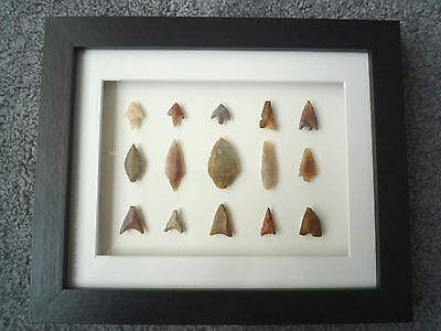 Neolithic Arrowheads in 3D Picture Frame, Authentic Artifacts 4000BC (Z080)