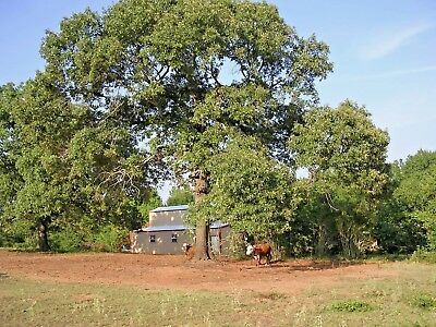Real Estate - 20 Acres + -Commercial and/or Residential Apt Barn,Cabins