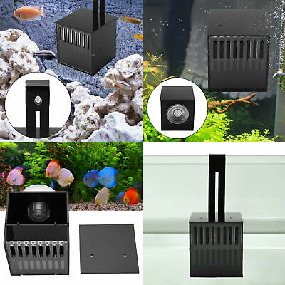 Fish Tank Breeding Hatchery Incubator Aquarium Breeder Isolation Hang Box