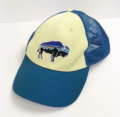 Patagonia Fitz Roy Bison Trucker Hat Multi-Color Green Blue Hiking Outdoors 6c631fffadde