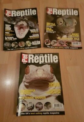 Pet Reptile X 3  January / February / March 2000