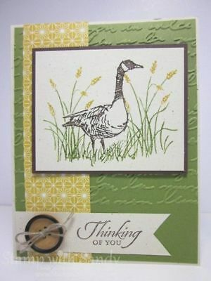 Stampin up Pretty Print Embossing folder~use with Wetlands Rose Wonder