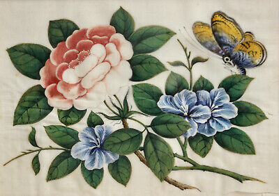 A Fine Antique c19th Chinese Rice Rice Paper Pith Painting Butterfly & Peonies
