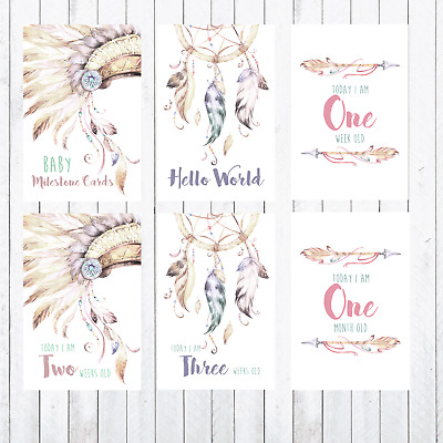 Baby Milestone Cards, 4x6 Photo Prop, 24 cards, Tribal, Headdress, Dreamcatcher