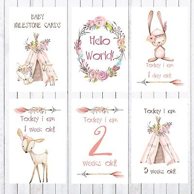 Baby Milestone Cards, 4x6 Photo Prop, 24 cards, Woodland animals, teepee, arrow