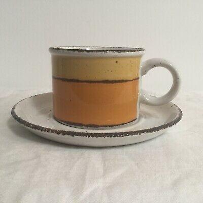 Stonehenge Midwinter Sun Cup And Saucer Stoneware