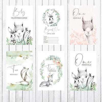 Baby Milestone Cards, 4x6 Photo Prop, Woodland Animal, Fox, Rabbit, Lama