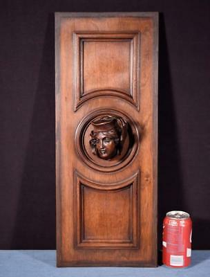 *French Antique Deep Carved Architectural Panel Door Solid Walnut with Face