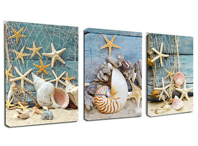 Framed 3 Panels Starfish Seashells Canvas Wall Art Painting Picture Home Decor