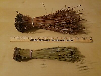 "2 LBS LONGLEAF PINE NEEDLES FOR COIL BASKETRY WEAVING & CRAFTS 8"" to 10"" LONG"