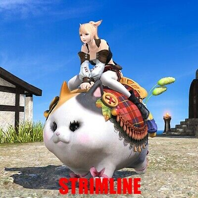 FINAL FANTASY XIV FFXIV FF14 Mount: Fatter Cat (Account-wide)