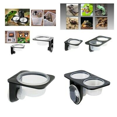 Gecko Feeder Double/Single Bowls For Reptile Lizard Food And Water Feeding Basin
