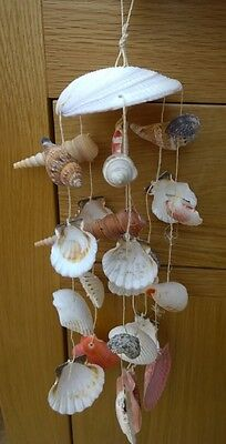 Real Seashell Windchimes Mobile Hanging Nautical Decoration Wind Chimes