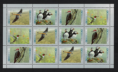 Canada Stamps - Full Pane of 12 - Birds of Canada #1594ii (Field Stock) - MNH
