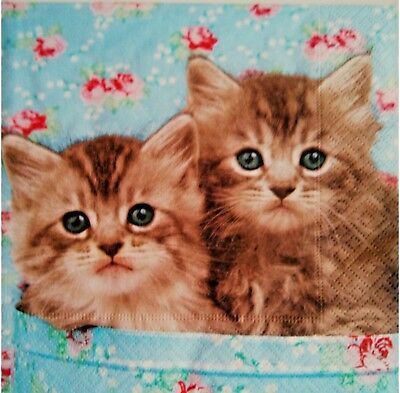 4 Single Table Paper Napkins for decoupage Cats.Servilletas decoupage Gatos.