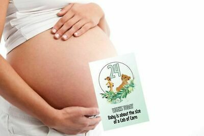 "Pregnancy Milestone Cards Lion King Pack of 30 Cards New Mum to be Gift 6""x4"""