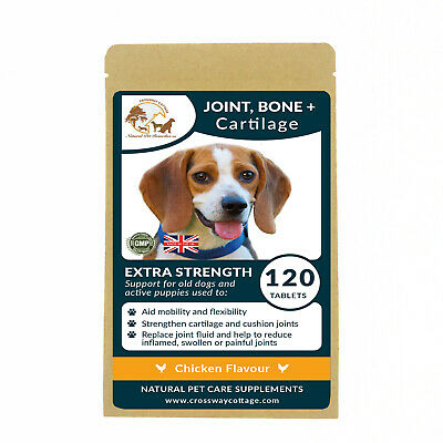 Support For Joint, Bone & Cartilage Powerful Green Lip Mussel | For old dogs