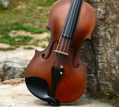 Beginner Violin Antique Maple Handmade Musical Instrument With Case And Bow New