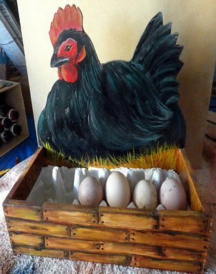 Hand Painted Hen Egg Box
