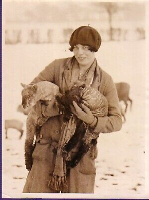 England Zoo Life 2 Baby Lamb Winter Jeune femme & agneaux hiver old Photo 1930'