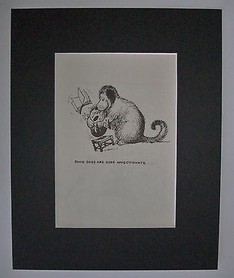 Dog Cartoon Print Norman Thelwell Over Affectionate Bookplate 1964 8x10 Matted