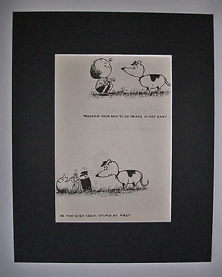 Dog Cartoon Print Norman Thelwell Teaching Tricks Bookplate 1964 8x10 Matted