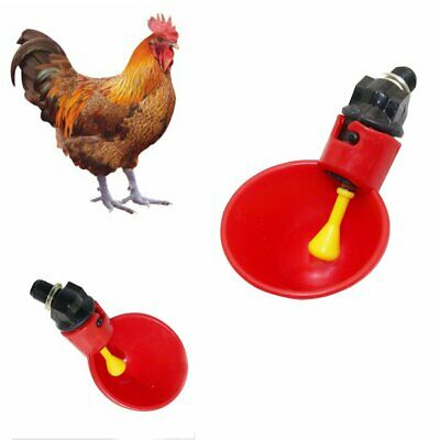 1/5Pcs Automatic Cups Chicken Waterer Poultry Chook Bird Water Feeder Drinker UU
