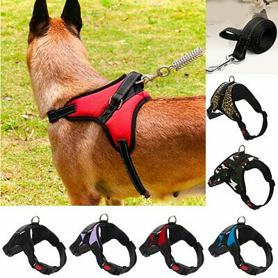 NEW Durable Small Dog Harness and Leash set Soft Nylon for Pet Puppy Walking