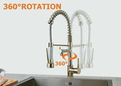 Gold Pull Out Spring Sprayer Dual Spout Kitchen Faucet Hot Cold Tap Mixer Brass