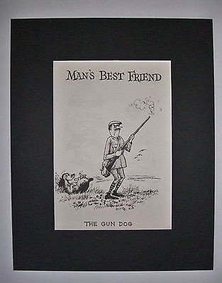 Dog Cartoon Print Norman Thelwell Gun Dog Hunter Bookplate 1964 8x10 Matted Cute