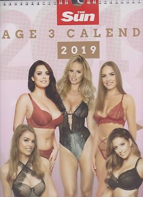 The Sun Page 3 ~ 2019 Calendar ~ A3 ~ Brand New & sealed