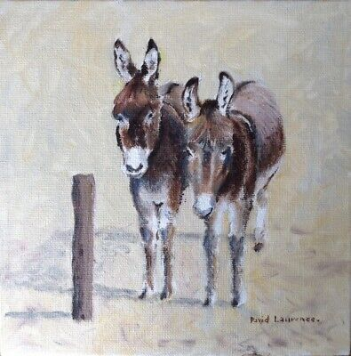 Donkeys - Original Oil on Canvas Board 8 x 8 inches by David Laurence