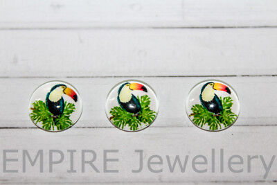 SALE!! 4 x Tropical Toucan Bird 12x12mm Glass Cabochons Cameo Dome Leaves forest