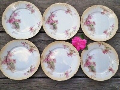 Antique Royal Doulton Dinner Plates X6 8133 Pink Clematis C1914 Blush Ivory Rare