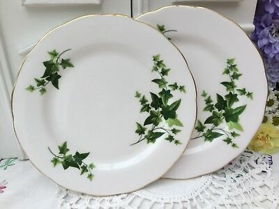 ROYAL VALE 1960s TEA PLATE SET OF 2 - GREEN IVY - GILDED BONE CHINA