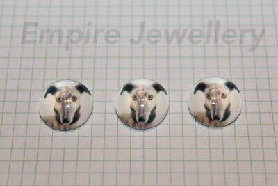 2 x Gorgeous Greyhound 12x12mm Glass Cabochons Cameo Dome Dog Puppy Italian Whip