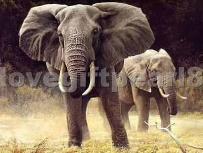 Handmade Oil Painting On Canvas : Two Elephant
